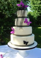 Cheap credit crunch butterfly wedding cake planet cake london
